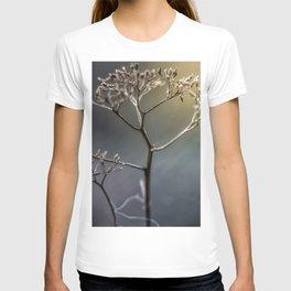 Golden Light T-shirt