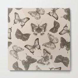 Vintage Butterflies & Moths  Metal Print