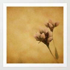 EVERY FLOWER IS A SOUL Art Print