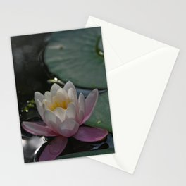 Elegance Stationery Cards