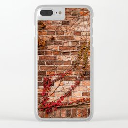 Red ivy hedge climber on wall Clear iPhone Case
