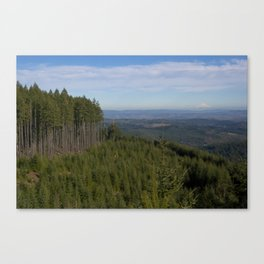 The Valley + Mountains Canvas Print