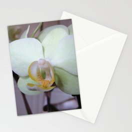 Orchid - 2014 Stationery Cards