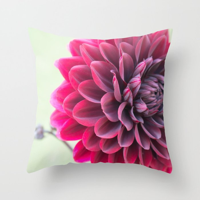 Burgundy Dawn Dahlia 2 Throw Pillow
