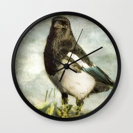 Message from the Magpie Wall Clock