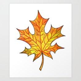 Autumn maple leaf Art Print