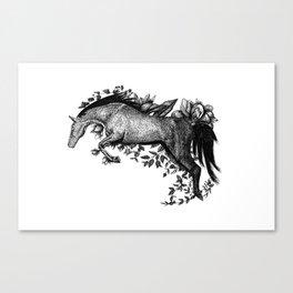 Horse - Go Vegan Canvas Print