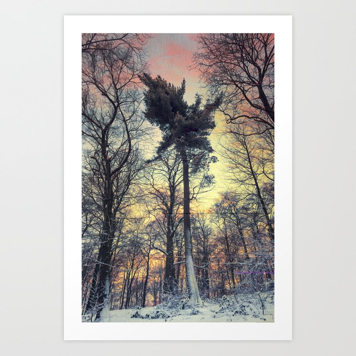 winter evening Art Print