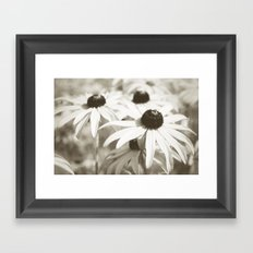 Fading Summer Framed Art Print
