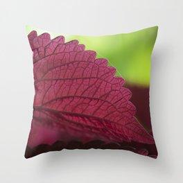 Coleus Pink III Throw Pillow