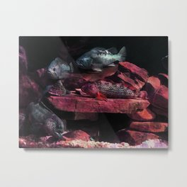 Fish on the Barbie Metal Print
