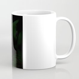 A  Fairys World Coffee Mug