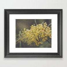 Quite and soothing Framed Art Print