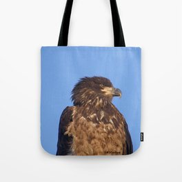 Golden Eagle on the Kenai Tote Bag