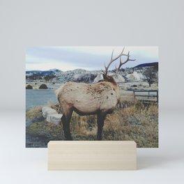 Mammoth Elk Mini Art Print
