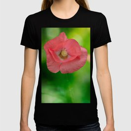 Field pink poppies T-shirt