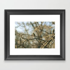 Coming of Age Framed Art Print