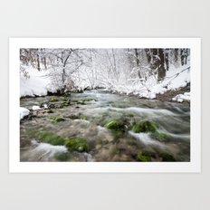 Winter water Art Print