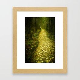 Alum Cave Trail Framed Art Print