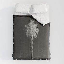 Salton Sea, Ca - Palm Tree Comforters
