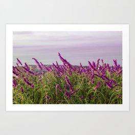 Lavender Wonderland Art Print