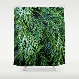Pacific Redcedar Shower Curtain