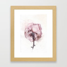 Dying Rose by Helga McLeod Framed Art Print