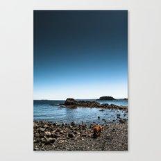 Living On A Blue Marble Canvas Print
