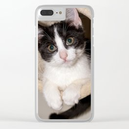 Black and white kitten Clear iPhone Case