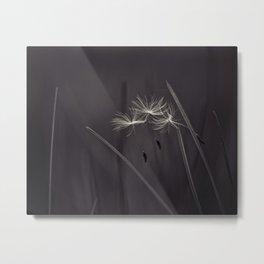 acrobatic seeds Metal Print
