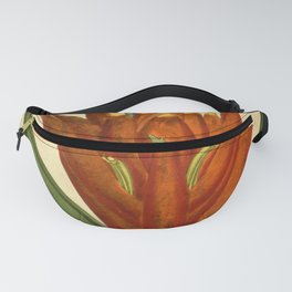 Flower musa coccinea Scarlet flowered Plantain tree Fanny Pack