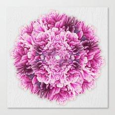 the pinkest  Canvas Print