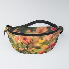Dahlias - Pompon Dahlias - Flowers - Bloom - Blossom. Little sweet moments. Fanny Pack