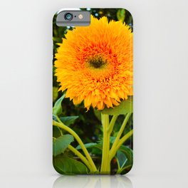 teddy bear sunflower iPhone Case