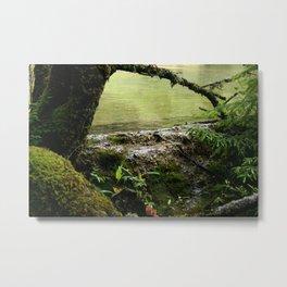 Green nature Metal Print
