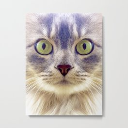 Meowface Metal Print
