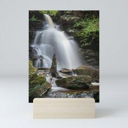 Ricketts Glen Waterfall Mini Art Print