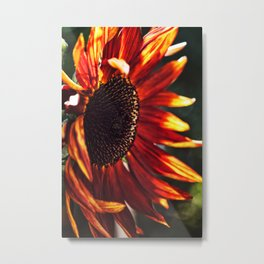 Fire Within Metal Print