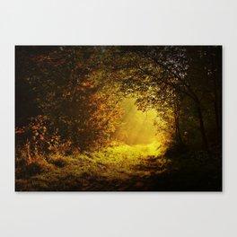 Via nel bosco Canvas Print