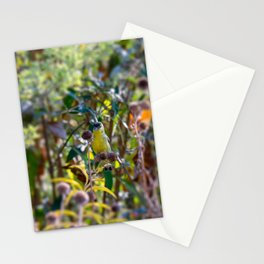 Lesser Goldfinch Stationery Cards