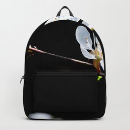 Nice White Japanese Apricot Flower Against The Black Background Backpack