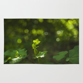 Green leaf and summer light bokeh Rug