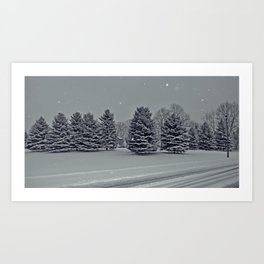 Nassagaweya Art Print