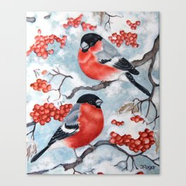 Red winter birds Canvas Print