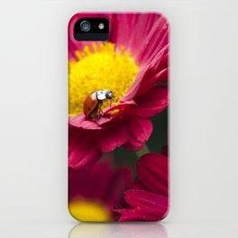 Little Red Ladybug iPhone Case