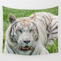 tigers Wall Tapestries featuring THE BEAUTY OF WHITE TIGERS by Catspaws