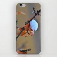 copper iPhone & iPod Skins featuring Copper by Best Light Images