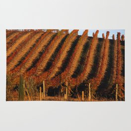 Vineyards of wine country Rug