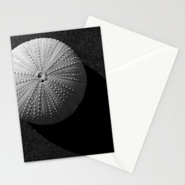 Seashell Stationery Cards