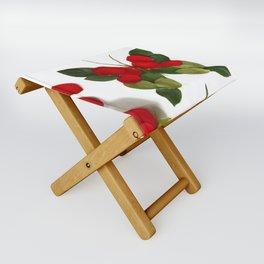 Butterfly-Rose Folding Stool
